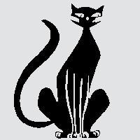 Аккуратный кот