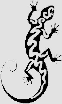 Ящерица-1