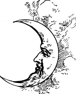 Мудрая луна, наклейка