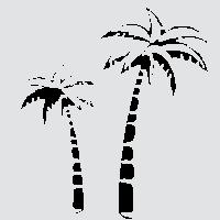 Пальма из Африки