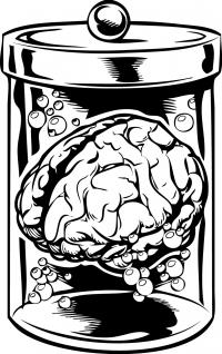 Баночка мозгов