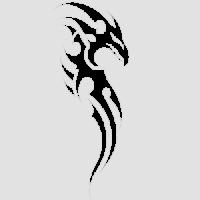 Дракон-8
