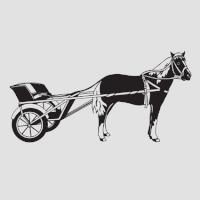 Лошадь-2