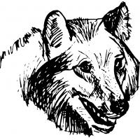 Волк, наклейка