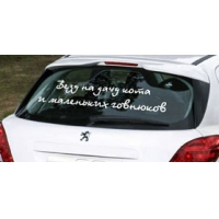 Везу на дачу кота и ... - наклейка на авто