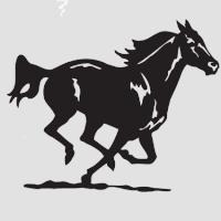Лошадь-6