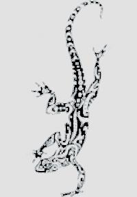 Ящерица-8