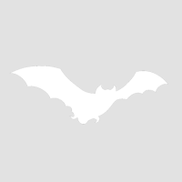 Настоящий бэтмэн