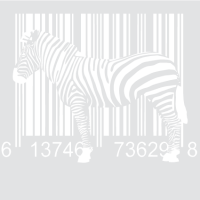 Цифровая зебра