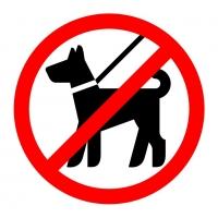 С животными запрещено - наклейка