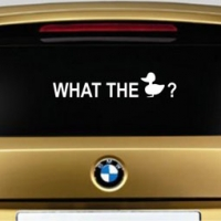 What the duck - наклейка на авто